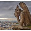 - Notre Dame Stryga - France