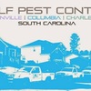 Ant Pest Control - Wolf Pest Control-North Cha...