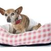 Dog Beds - Dog Beds Mega Store