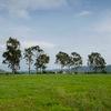 NA plots near hinjewadi - Mount View