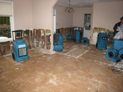 Denver water damage Picture Box