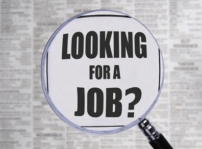 job finder Picture Box