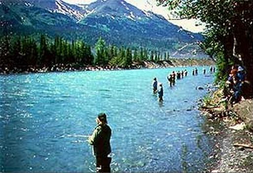 Kenai river fishing Picture Box