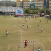 sports-2014-7 - Picture Box