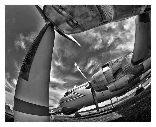Argus B&W fisheye Black & White and Sepia