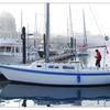 Victoria 2014 13 - Vancouver Island