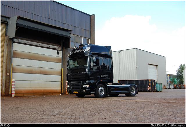 DSC 4555-border Blankespoor - Apeldoorn