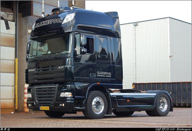 DSC 4562-border Blankespoor - Apeldoorn