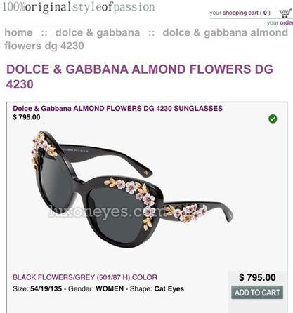 10410124 10152700952424798 3825105536966210273 n Floral Eyewear
