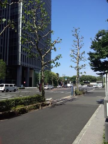 Image00001 JAPAN6