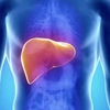 liver detox - Picture Box