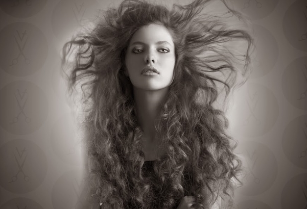 Balayage hair service Seattle Picture Box