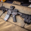 MG 2761 - Arms