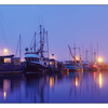 Comox Docks Fog  pano2 2015 - Panorama Images
