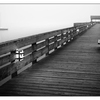 Comox Docks Fog  B&W 2015 - Black & White and Sepia