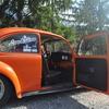 DSC 0209 - The super beetle