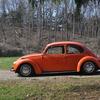 DSC 0226 - The super beetle