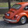 DSC 0234 - The super beetle