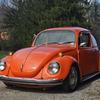 DSC 0246 - The super beetle