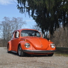 DSC 0258 - The super beetle