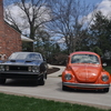 DSC 0275 - mustang and the beetle