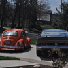 DSC 0315 - mustang and the beetle