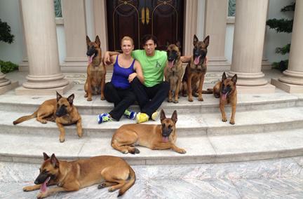 personal protection dogs Personal protection dogs