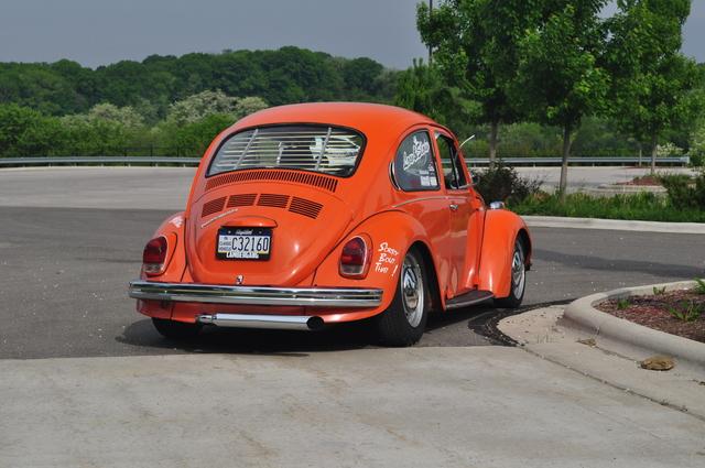 DSC 0037 The super beetle