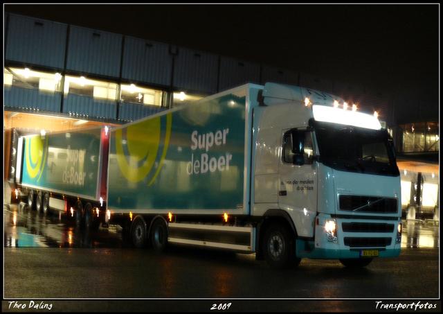 04-03-09 004-border Ritje Texel