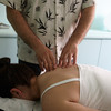 chinese herbs - Alban Acupuncture & Herbs C...