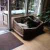 Dolly 14-06-15 (24) - De komst van Dolly uit Roem...