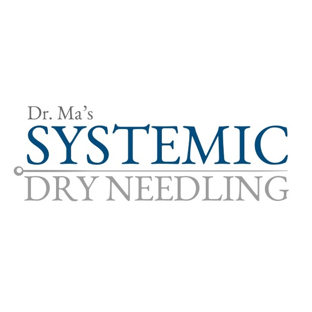 Systemic Dry Needling Picture Box