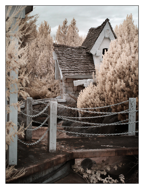 Coombs Infrared 2015 11 Infrared photography