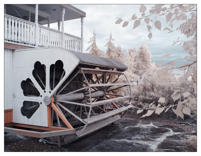Coombs Infrared 2015 8 Infrared photography