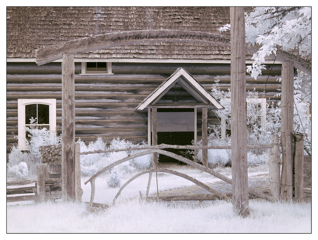 Coombs Infrared 2015 5 Infrared photography