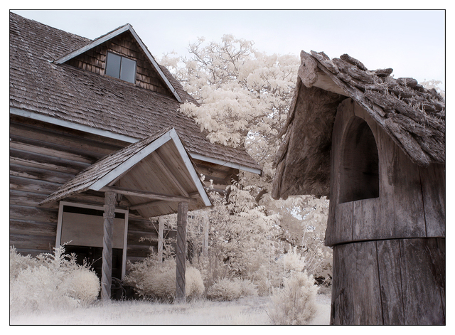 Coombs Infrared 2015 4 Infrared photography