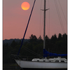 ForestFire Sundown 01 - Comox Valley