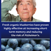The Benefits of Blueberries... - Picture Box