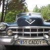 IMG 3335 - Cars