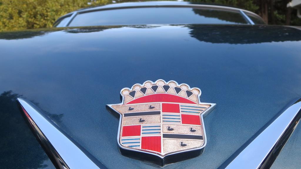 IMG 4016 - Cars