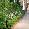 Landscape Low Voltage LED L... - The Garden Gates Landscapin...