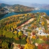 Tour to Nami Island with Ki... - Kim's Travel