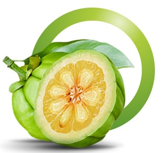 garcinia cambogia Pure Asian Garcinia UK