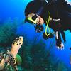 scuba diving nj - Scuba Guru