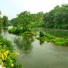 Beautiful River - Picture Box