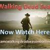 Walking Dead Season 6  Epis... - Picture Box