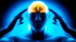 http://supplementtrends http://supplementtrends.com/brain-r8/