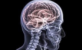 images (24) http://braindiscussion.com/apex-vitality-mastermind/
