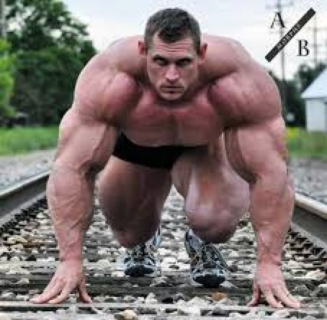 greatest-bodybuilding-chest-workout 1 Picture Box