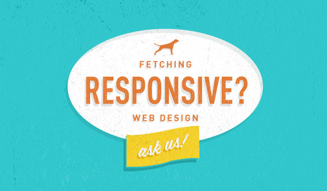 straydog-responsive-web-design-vancouver-straydog3 Picture Box
